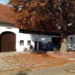 Hof mit Seminargebäude & Stadl